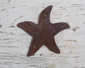 "Not all star belong to the sky ""starfish"""