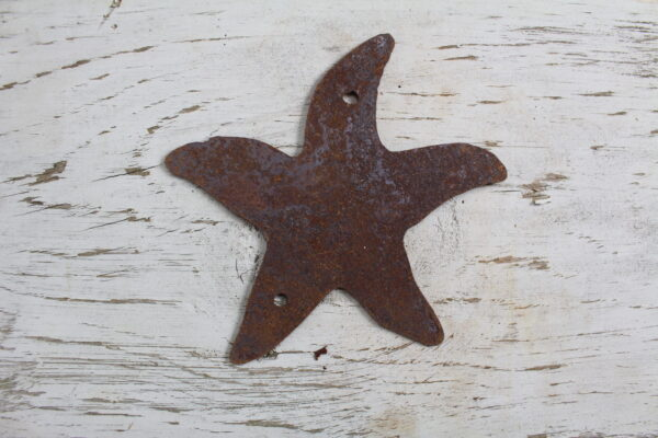 """Not all star belong to the sky """"starfish"""""""