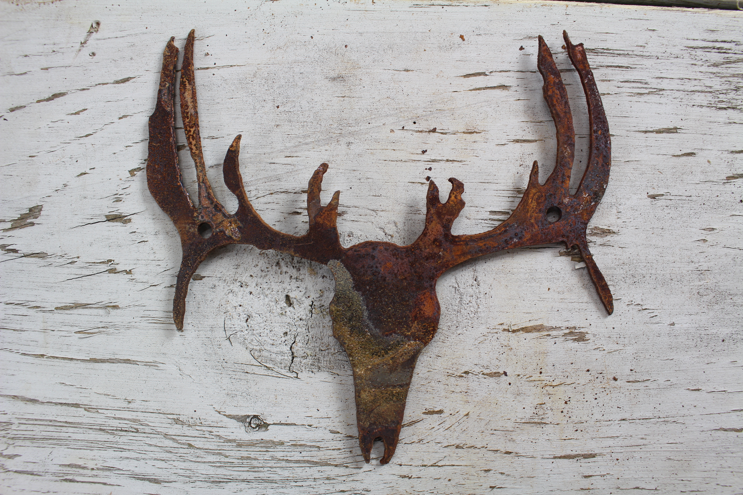 Thick Rusty Metal Buck Skull Rustic Metal Letters Amp Wall Art