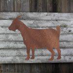 Goat on woodback
