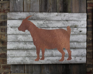 Goat on woodback